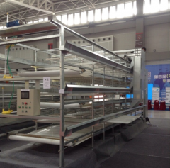 H Type Broiler Cages